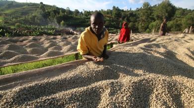 Burundian farmers with coffee - CoffeeInside 2