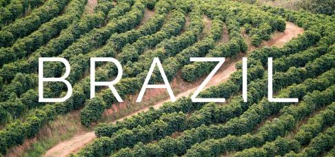 Coffee-Inside Coffee in Brazil