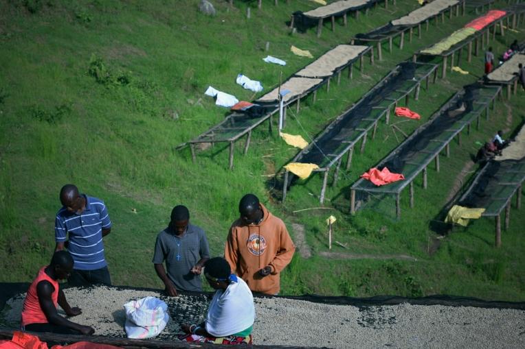Kigeyo-Washing-Station-in-Rwada-CoffeeInside