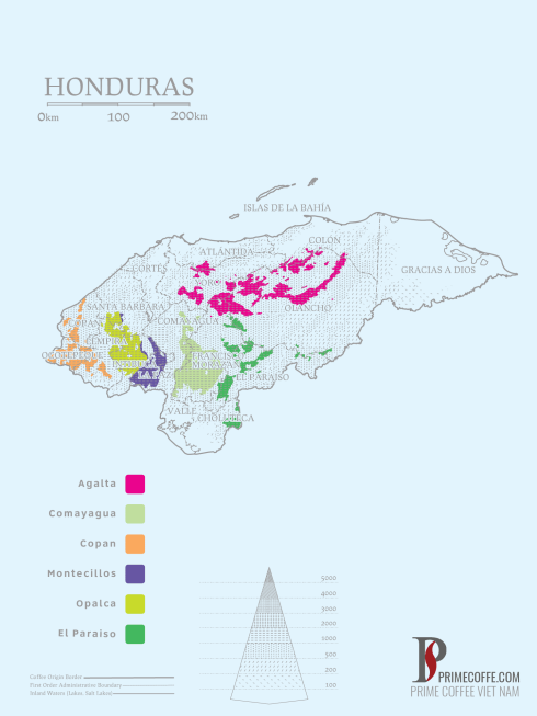 Map coffee in Honduras -coffee inside