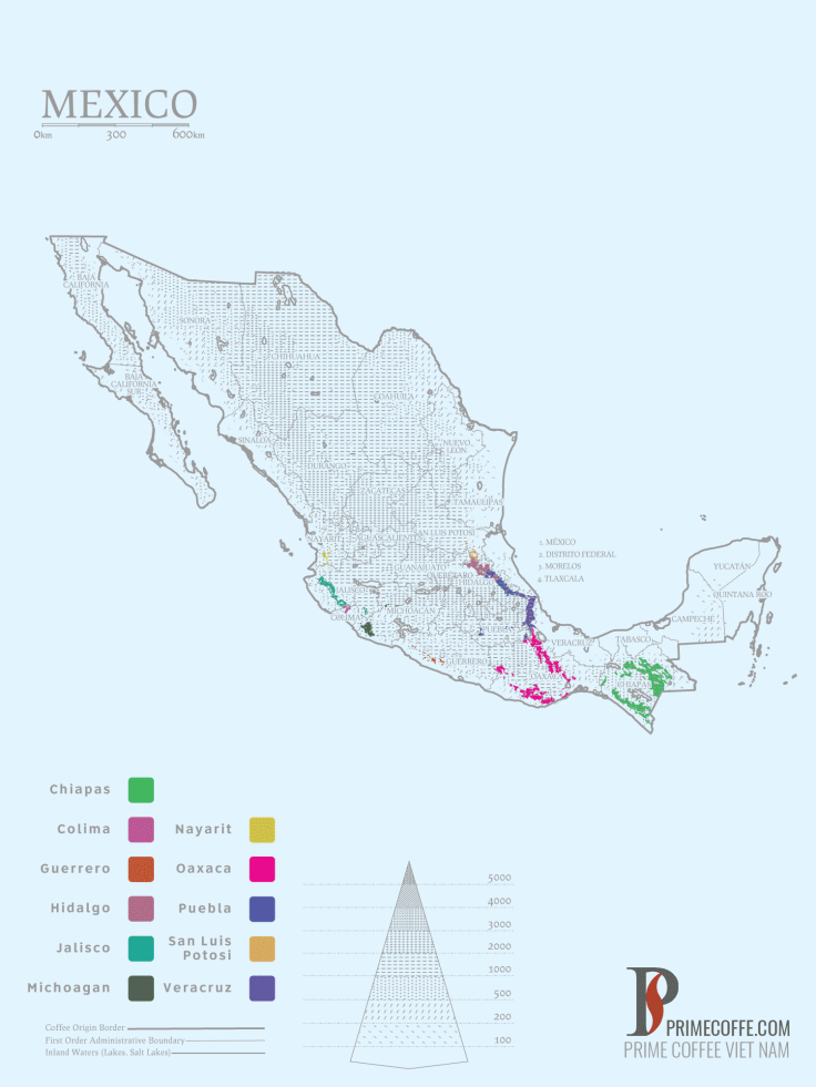 Map coffee in Mexico - Coffee inside