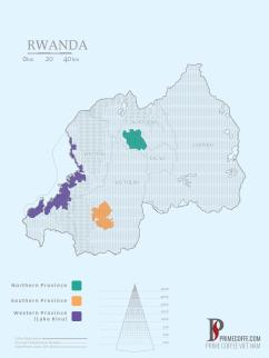 Map coffee in Rwanda - Coffee inside