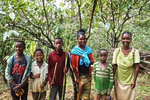 Smallholder farmers at Yirgacheffe - Ethiopia - Coffee Inside