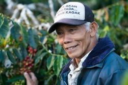 sumatra Framer Coffee