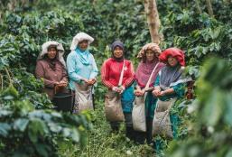 Woman with Coffee Sumatra - Coffee Inside