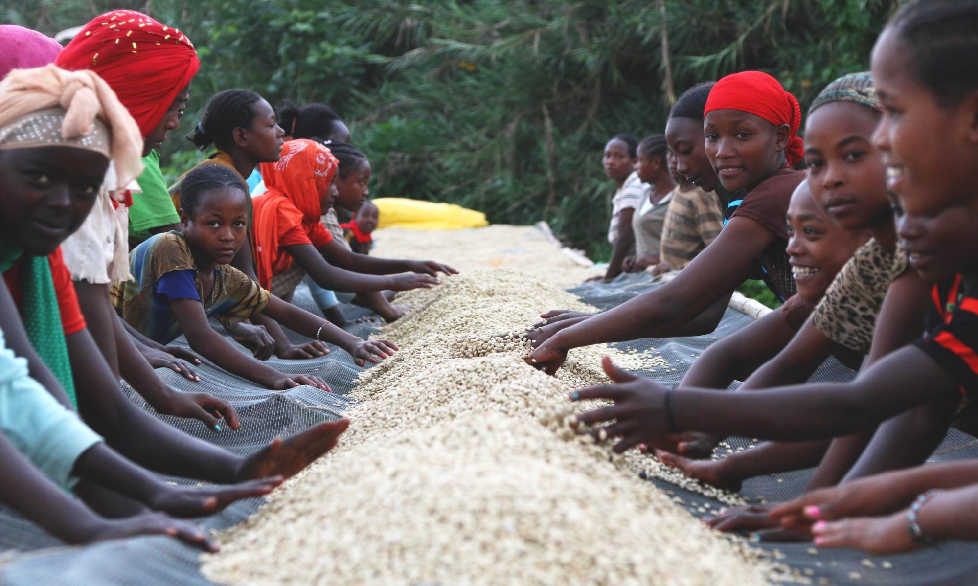 Womnan with Coffee Adado - Ethiopia by Coffee Inside