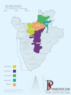 Word map coffee - Coffee in Burundi - CoffeeInside