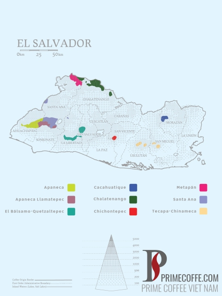 Word map coffee - Coffee in El Salvador - CoffeeInside