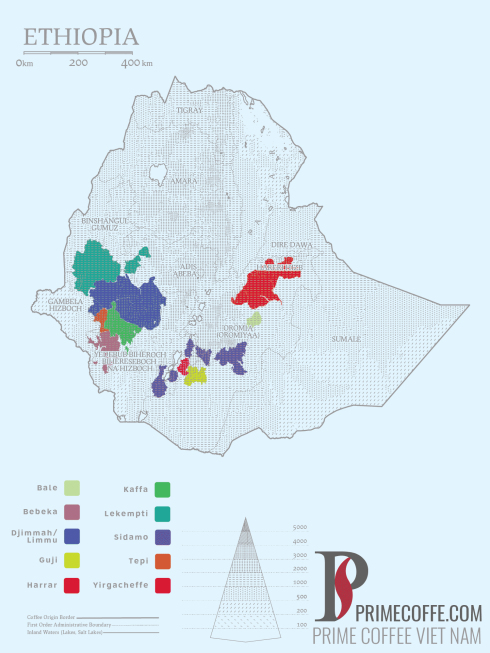 Word map coffee coffee in Ethiopia coffeeinside