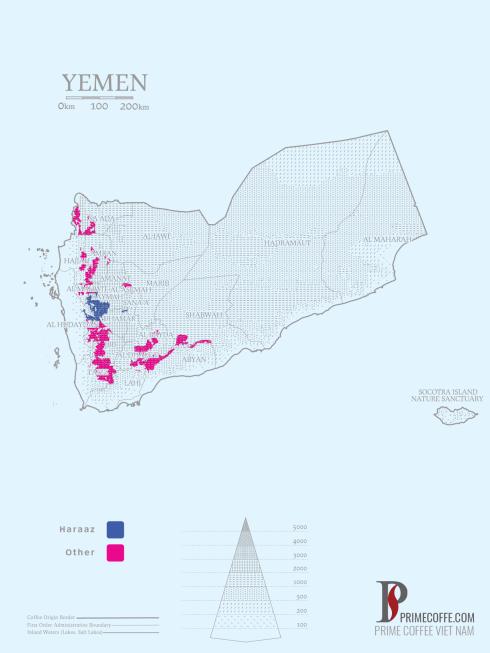 Map coffee in Yemen - Coffee inside
